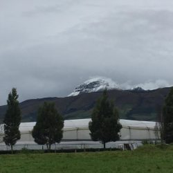 Cotopaxi cold